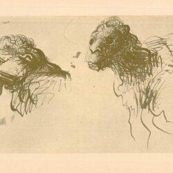 Rembrandt, zeichnung, hofstede de groot 277, Zwei Köpfe von Kamelen