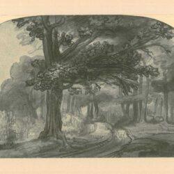 Rembrandt, zeichnung, hofstede de groot 282, Der Wag durch den Laubwald