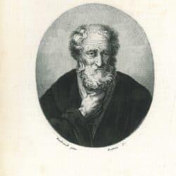 Rembrandt, schilderij, Govert Flinck, Tronie of an old bearded man