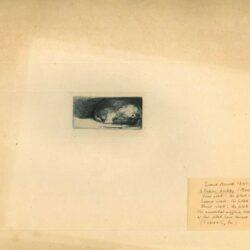 Rembrandt, Ets, Bartsch B. 153, Slapend hondje