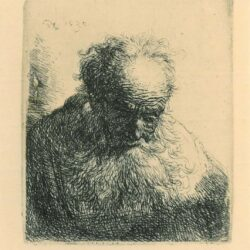 Rembrandt, etching, Bartsch b. 325, Bust of an old man with a flowing beard, the head bowed forward, the left shoulder unshaded